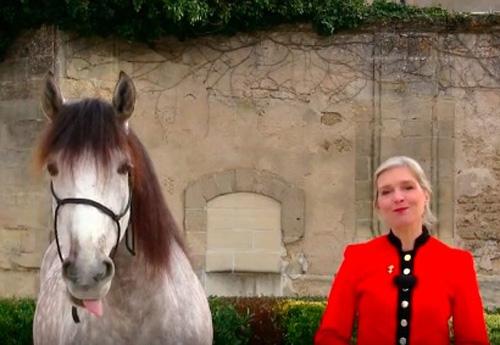 cheval rencontres