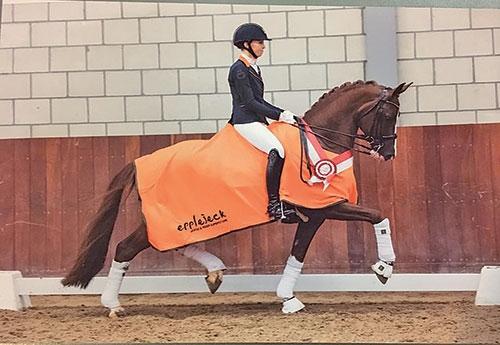 Sultan des Paluds, futur cheval olympique