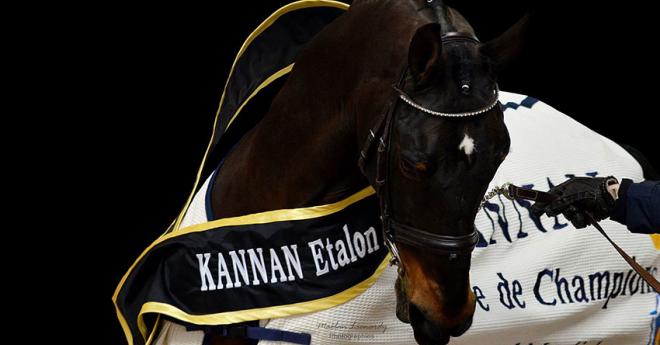 Kannan en 2016 avait été mis à l'honneur à St Lô (maelan-L-Photographies)