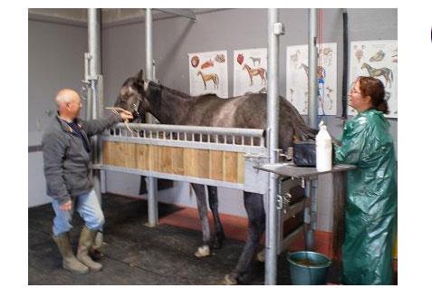 le confinement justifie la fermeture des cabinets vétérinaires, dont l'activité doit se limiter à assurer la continuité des soins et leur permanence.