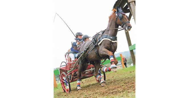 Championne de France Elite 1 cheval, Claire Lefort avec Edwuard (© M. Guillamot)